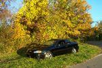 fall tony's car 006.jpg