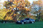 fall tony's car 011.jpg